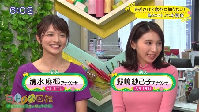 野嶋紗己子~毎日放送の新人アナが超可愛くて巨乳なのが最高!マジ注目!0002shikogin
