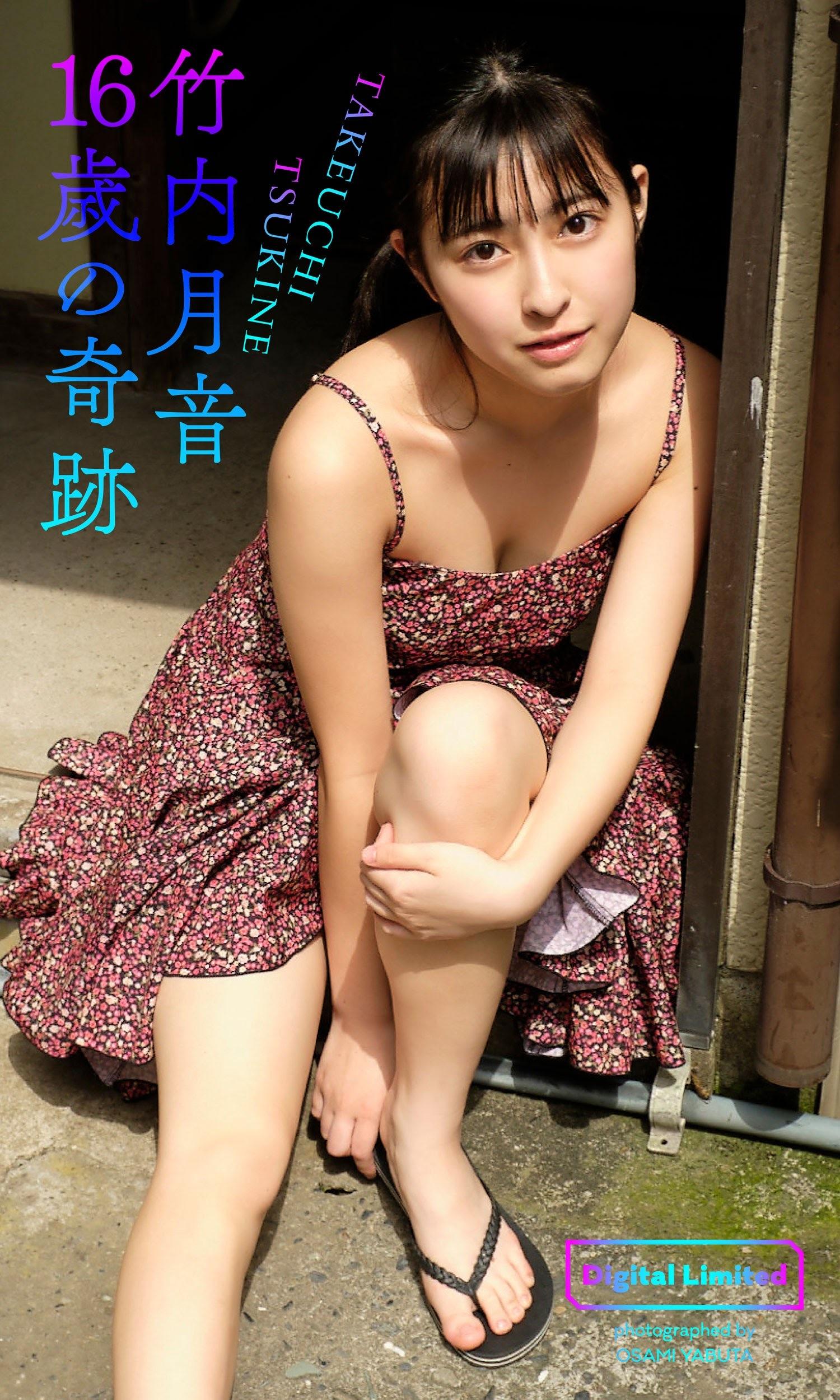 TAKEUCHI TSUKINE007