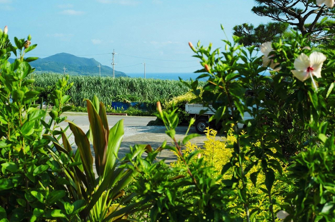 And on Kumejima the first experienceher late summer vacation begins! Saaya080