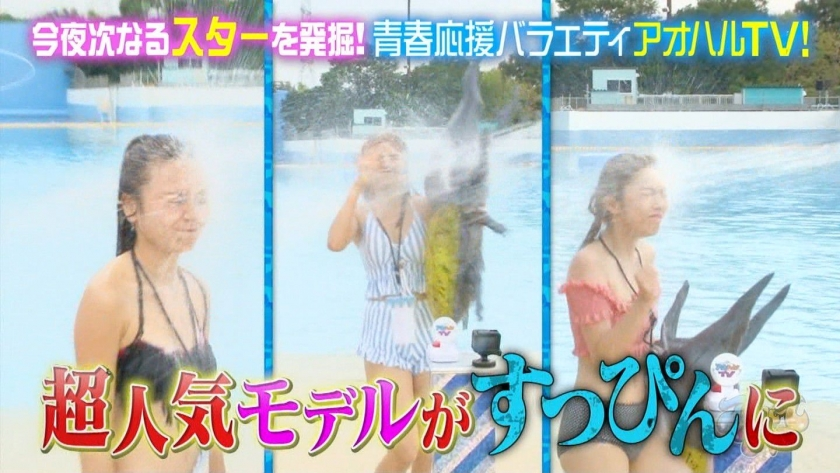 Aoharu TV_Swimming TournamentModelSwimsuit_TV Cap Image001