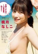 Nashiko Momotsuki 45253001