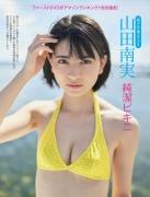Minami Yamada Chastity Bikini001