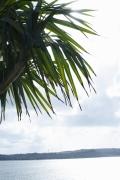 Umikas smile explodes on an island somewhere in the south! Kawashima Umika Swimsuit Gravure049
