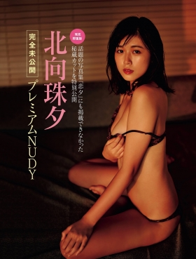 Book Koiyu On Sale Now 2021001