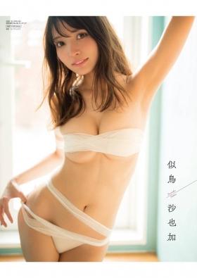 Sayaka Nitori Swimsuit Gravure Delivery Nitori 2021001