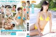 Aika Nishihara swimsuit gravure Dental hygienistgrador There is no such development in real life2019_0825_02_nisiharamanaka_045