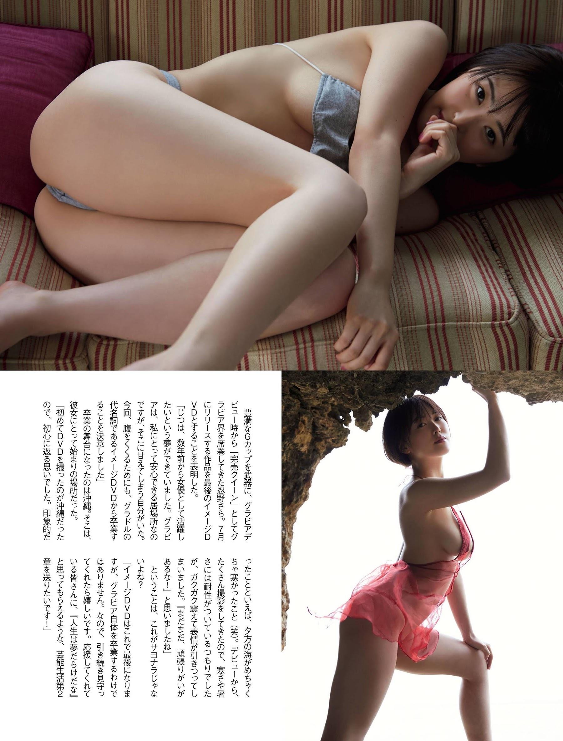 oshino002.jpg