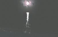 海から上がってきた太宰