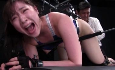 【女子プロレスラー】拘束状態のまま四つん這いで快楽責めされるピタコスの美波沙耶【女格闘家】