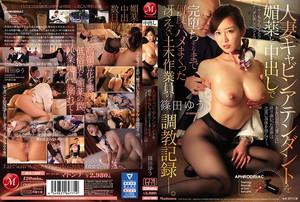 篠田ゆう 人妻キャビンアテンダントを媚薬と中出しで完堕ちするまで何度もハメまくった冴えない土木作業員の調教記録―。