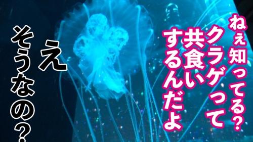 レンタル彼女 凛ちゃん 21歳 イ●スタグラマー 300MIUM-643 (吉良りん) 04
