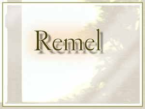remel_usagiclub00000.jpg