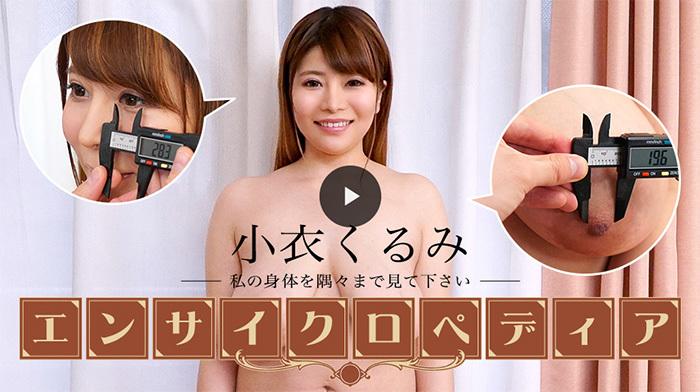 セクシー女優エンサイクロペディア 小衣くるみ