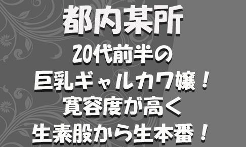 FC2用サムネイル_特別_新_234