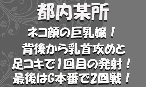 FC2用サムネイル_特別_新272