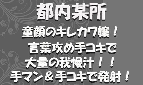 FC2用サムネイル_特別_新347