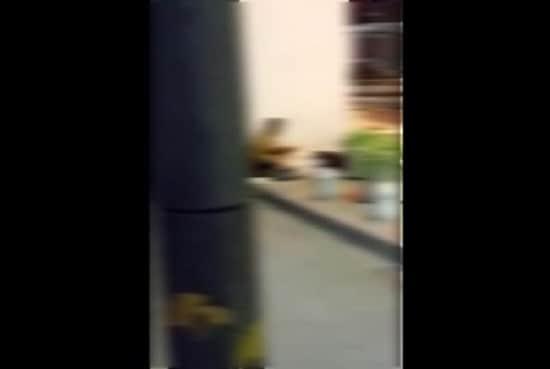 【衝撃盗撮】泥酔して路上で寝てる女子大生がホームレスに犯されてる衝撃現場がこちら
