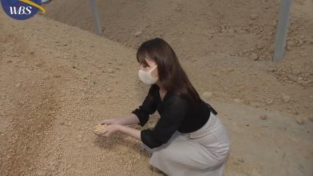 角谷暁子アナの画像044