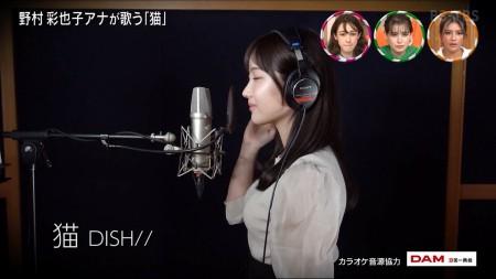 野村彩也子アナの画像033