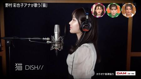 野村彩也子アナの画像035