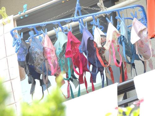 【画像】隣の人妻さん、ブラジャーを大量に洗濯してしまう