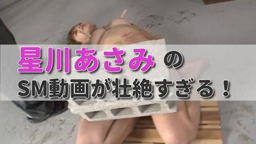 【星川あさみ】一本鞭で逆さ吊り100叩きの壮絶なハードSM動画が見応えたっぷり!【人間便器】