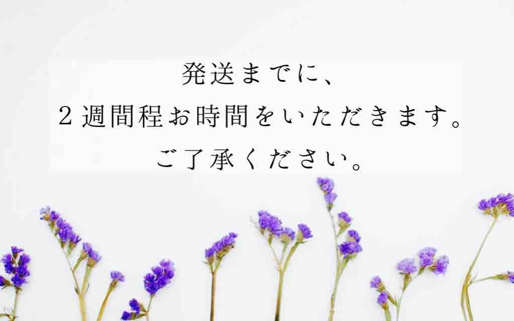 fc2blog_2021011903164748a.jpg