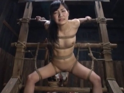 tied hazukasii SM 4304 Porn Videos - Tube8 - 201126-093955