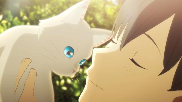 【悲報】野口健、ひろゆきの「でもお前猫殺してるよね」が効きまくってしまい猫事件について釈明する