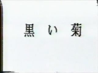 田口ゆかり 黒い菊