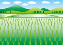 日本人「農家さん今までごめんなさい。サクナヒメ遊んで農薬は必要不可欠だとわかった」